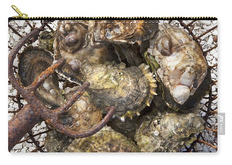 Oysters - Carry-All Pouch