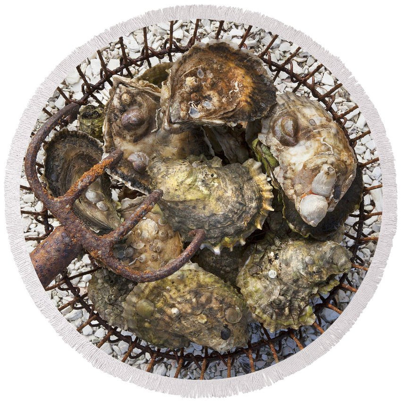 Oysters - Round Beach Towel