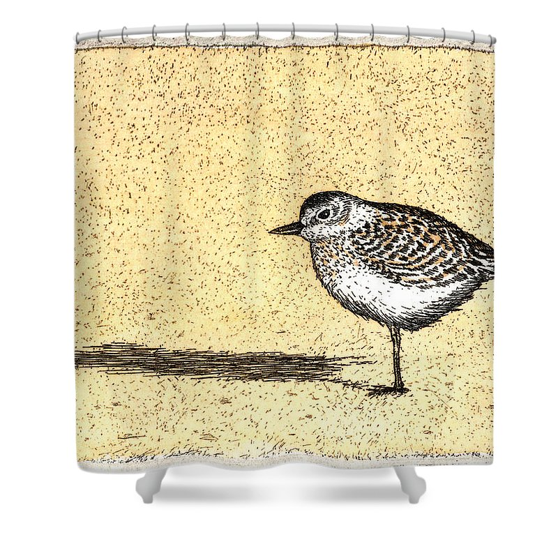 Peep - Shower Curtain