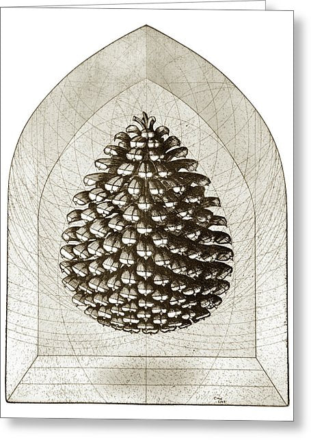 Pine Cone - Greeting Card