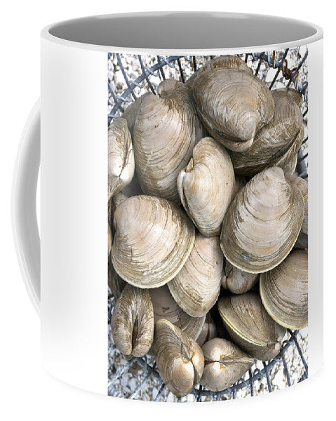 Barnstable Harbor Quahogs - Mug