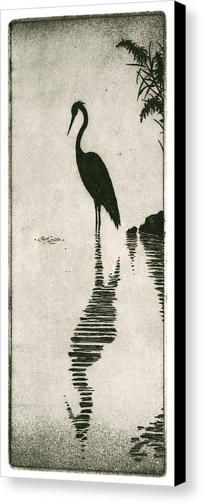 Reflecting - Canvas Print