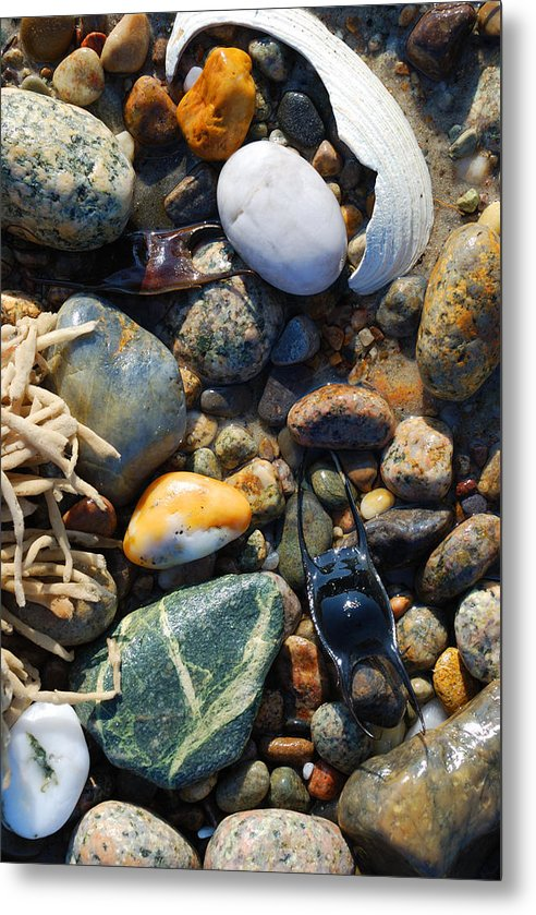 Rocks And Shells On Sandy Neck Beach - Metal Print