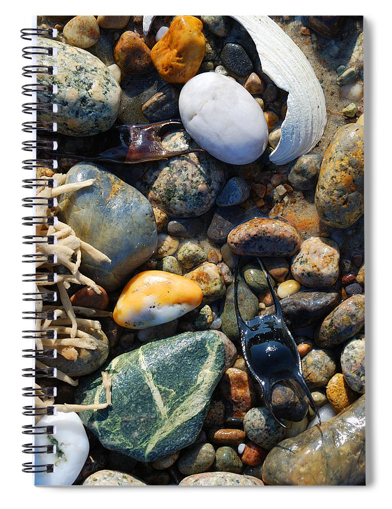 Rocks And Shells On Sandy Neck Beach - Spiral Notebook