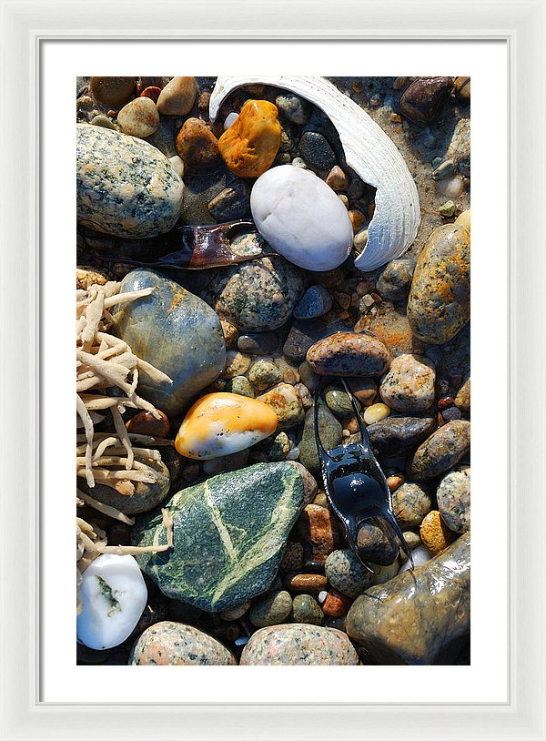 Rocks And Shells On Sandy Neck Beach - Framed Print