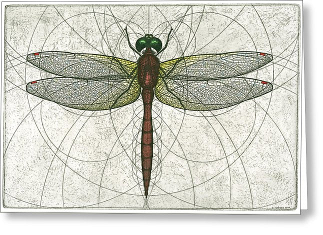 Ruby Meadowhawk Dragonfly - Greeting Card