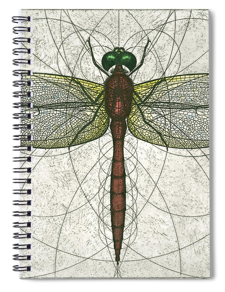 Ruby Meadowhawk Dragonfly - Spiral Notebook