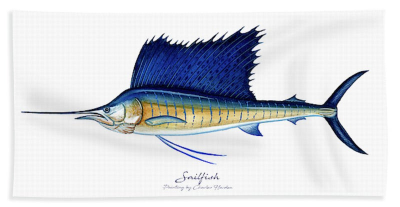 Sailfish - Beach Towel