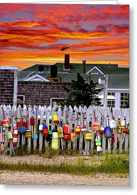 Sandy Neck Sunset - Greeting Card