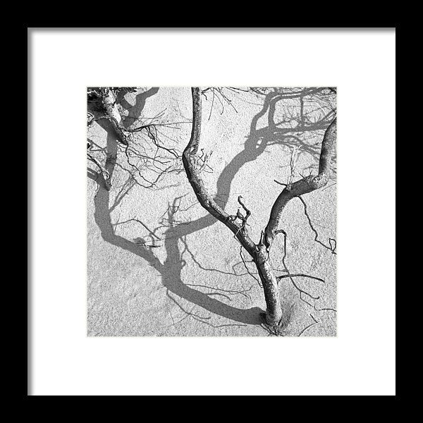 Shadows On The Sand - Framed Print