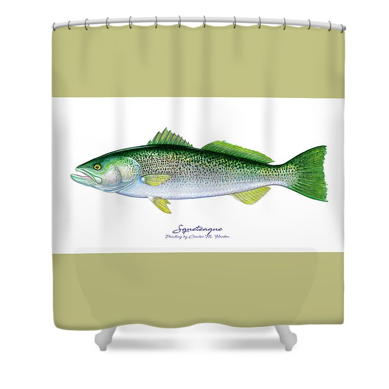 Squeteague - Shower Curtain