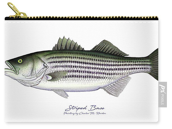 Striped Bass - Carry-All Pouch
