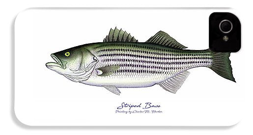 Striped Bass - Phone Case