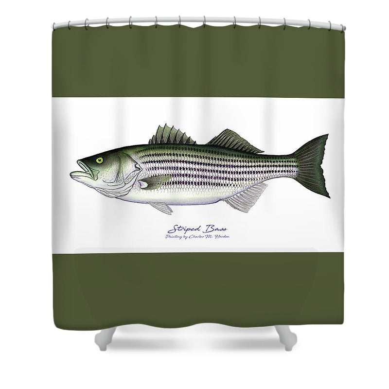 Striped Bass - Shower Curtain