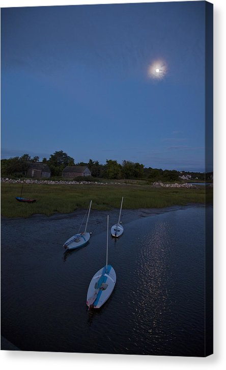 Sunfishes In Moonlight - Canvas Print