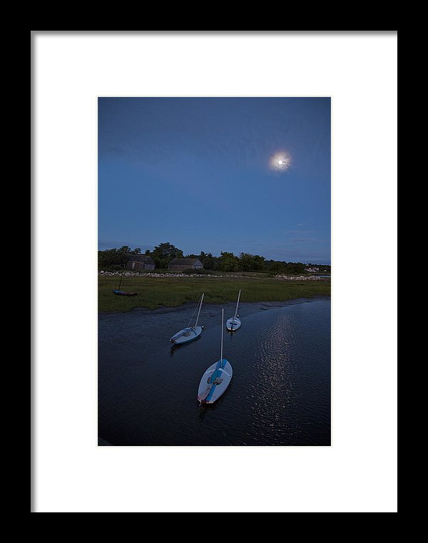 Sunfishes In Moonlight - Framed Print