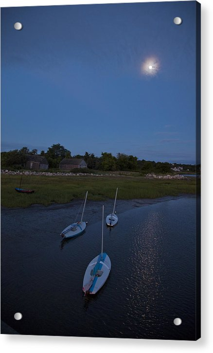 Sunfishes In Moonlight - Acrylic Print