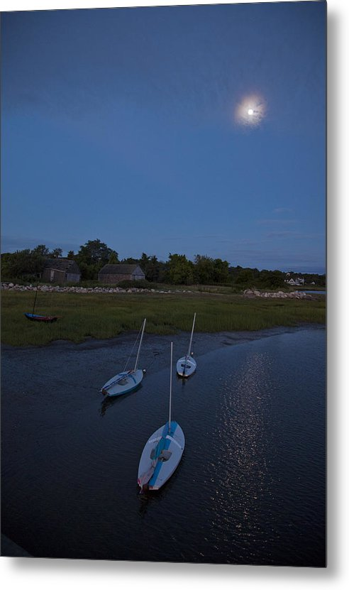 Sunfishes In Moonlight - Metal Print
