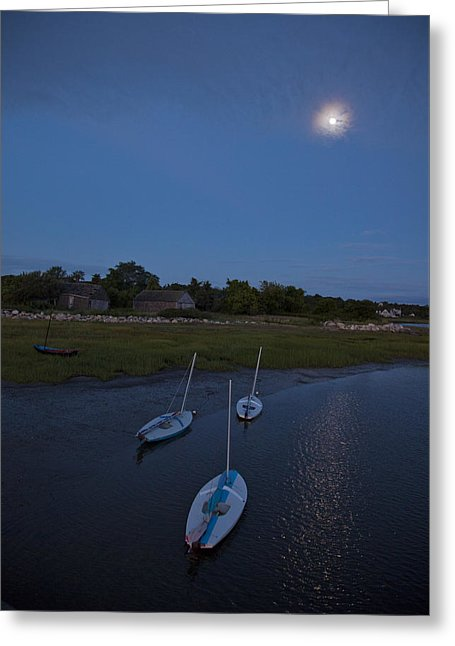 Sunfishes In Moonlight - Greeting Card