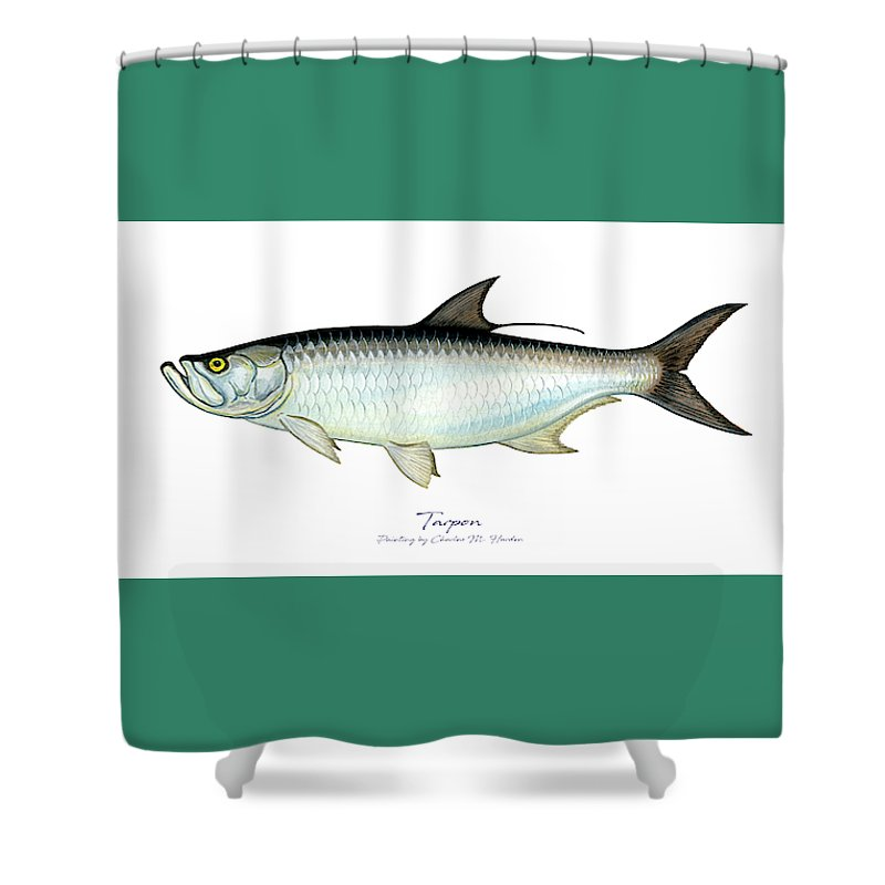Tarpon - Shower Curtain