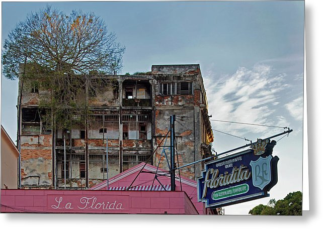 Tree In Building Over La Floridita Havana Cuba - Greeting Card