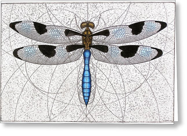 Twelve Spotted Skimmer - Greeting Card