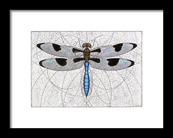Twelve Spotted Skimmer - Framed Print