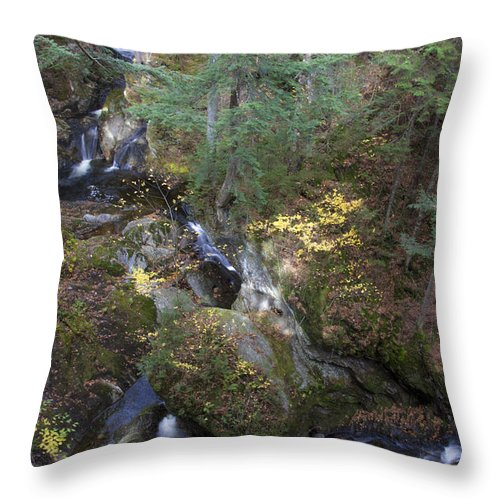 Vermont Stream 2 - Throw Pillow
