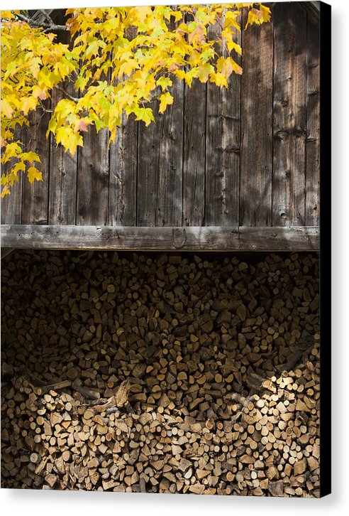 Vermont Woodshed - Canvas Print