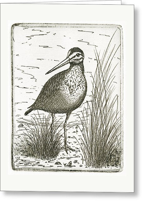 Yellowlegs Shorebird - Greeting Card