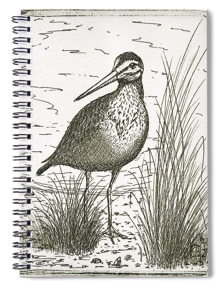 Yellowlegs Shorebird - Spiral Notebook