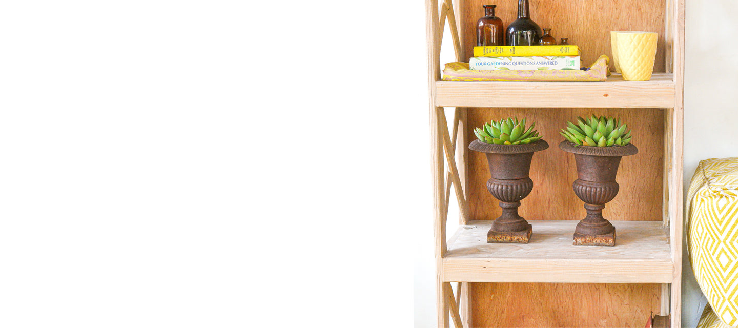 Bookshelf in a website banner with plants.