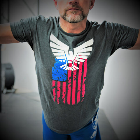 Eagle Flag T-Shirt Mens T-Shirt - 321Apparel - crossfit