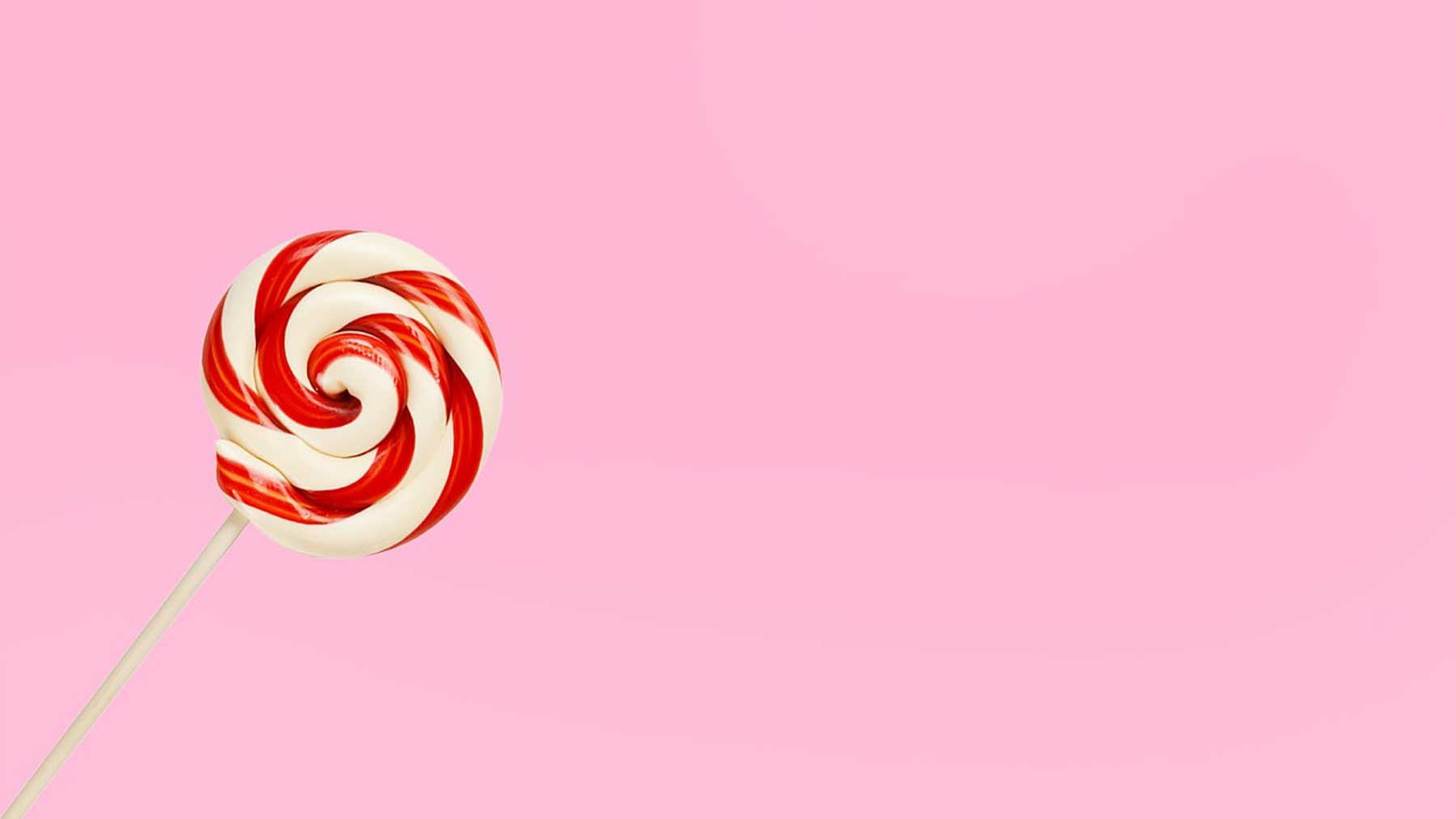 red and white swirly candy cane against pink background to represent sugar