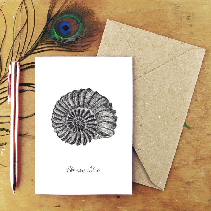 Ammonite Greetings Card