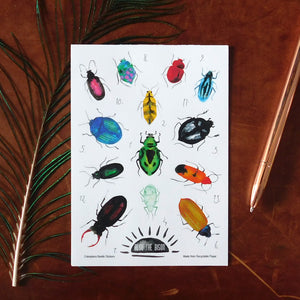 Coleoptera Beetle Print Eco Paper Sticker Sheet