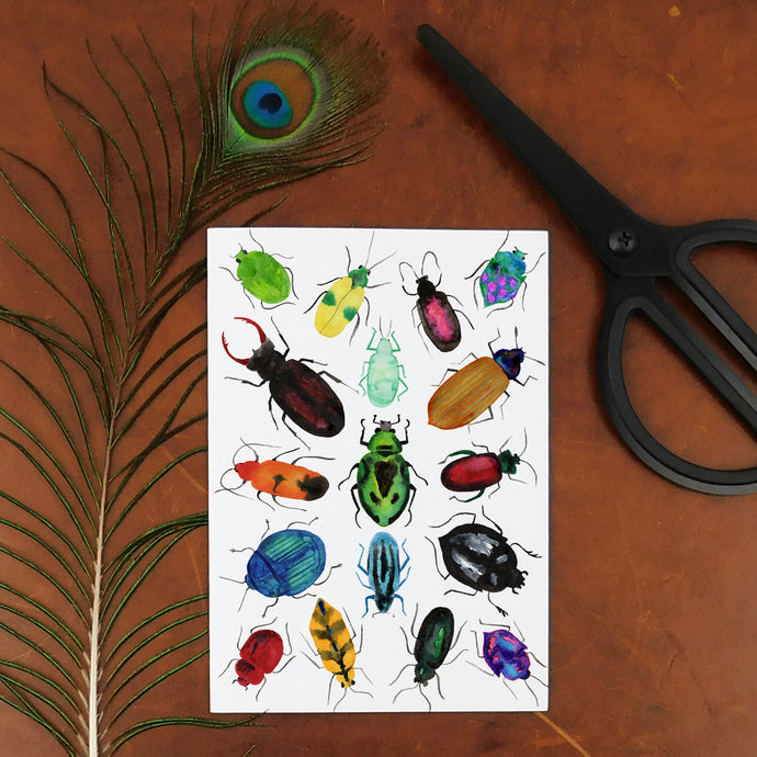 Coleoptera Beetle Temporary Tattoos