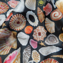 Load image into Gallery viewer, Mollusca Sea Shell Print Silk Scarf