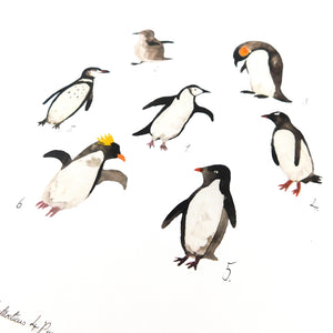Waddle of Penguins Art Print