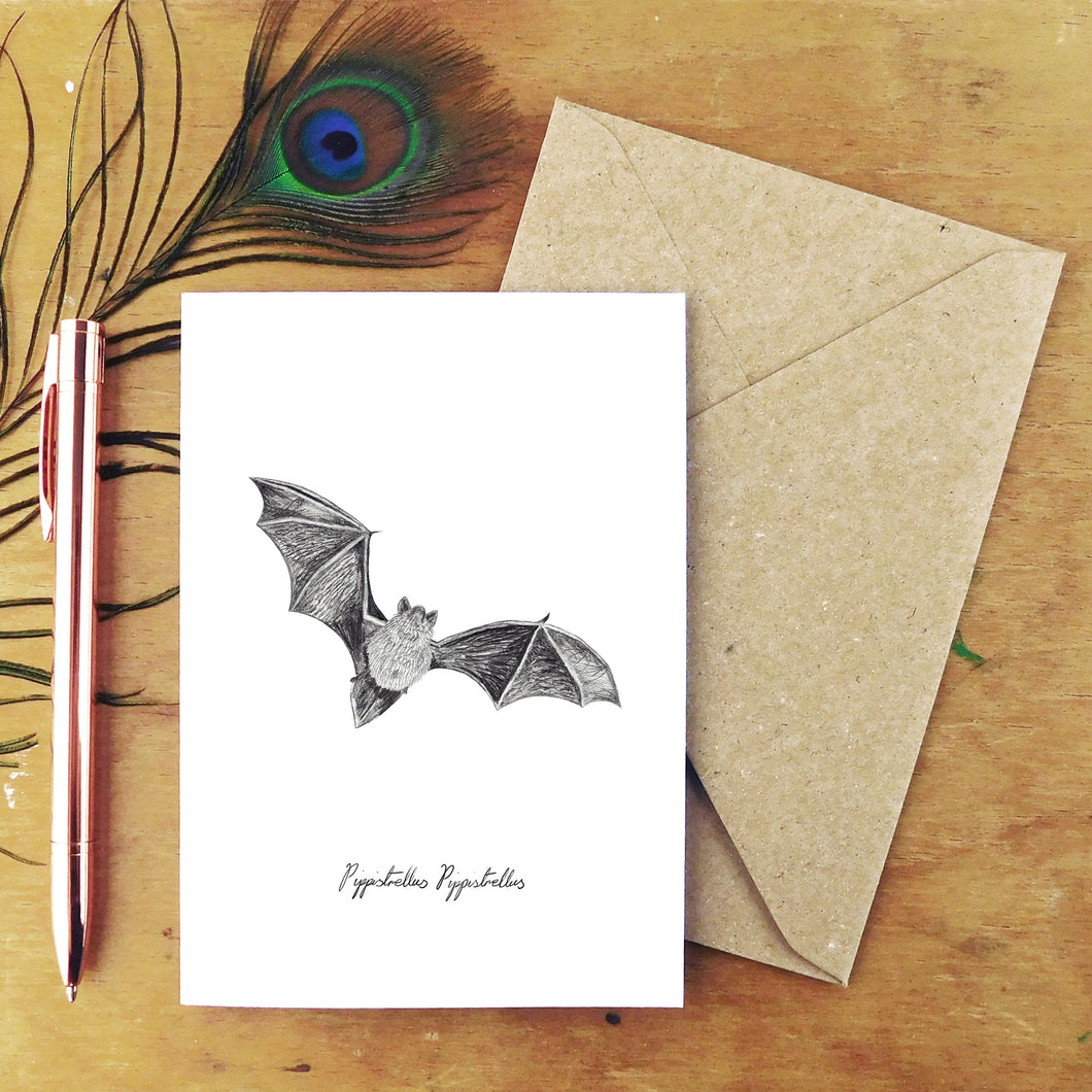 Chiroptera Pipistrelle Greetings Card