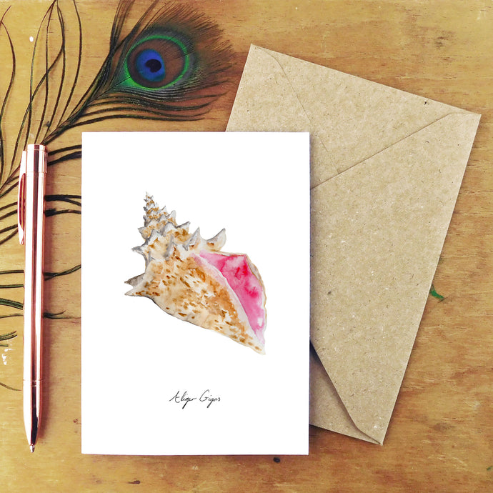 Conchae Conch Shell Greetings Card