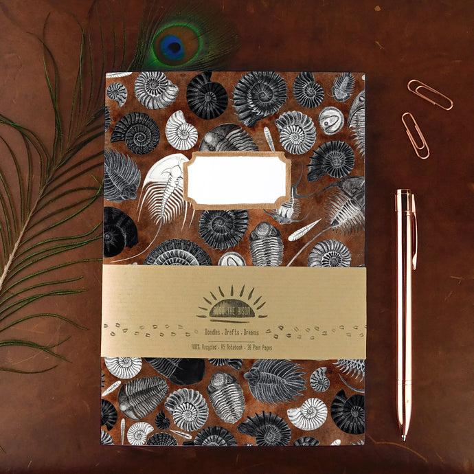 Ammonoidea Ammonite Notebook