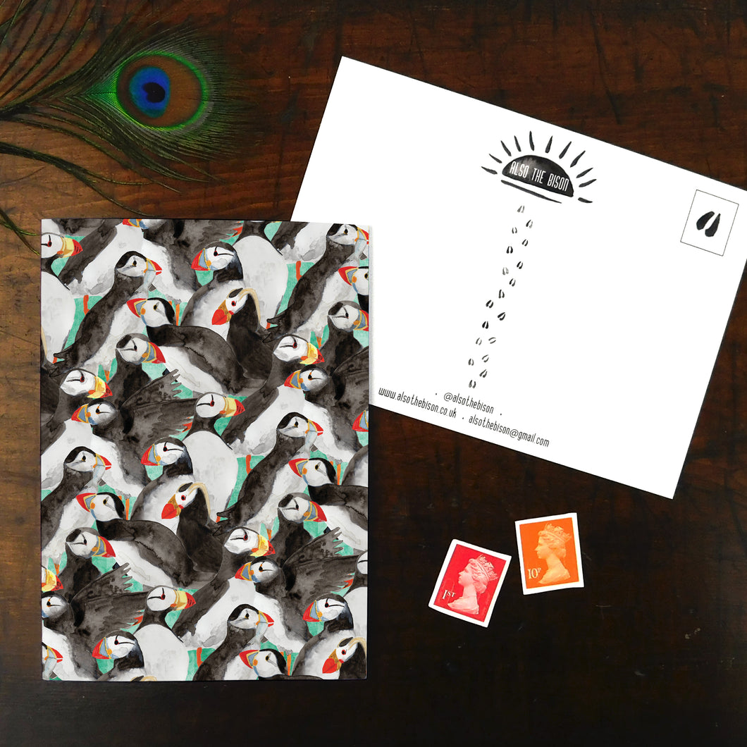 Improbability of Puffins Print Postcard