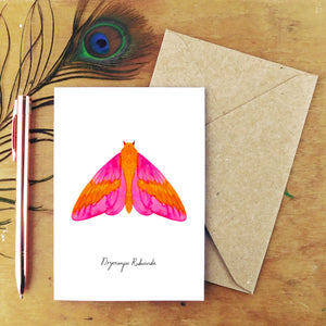 Rosy Maple Moth Greetings Card