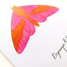 Load image into Gallery viewer, Rosy Maple Moth Greetings Card