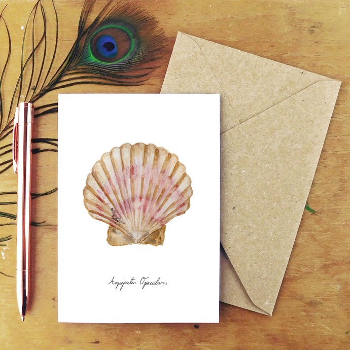 Conchae Scallop Shell Greetings Card
