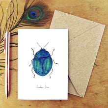 Load image into Gallery viewer, Beetle Specimens Greetings Card Pack