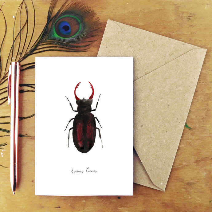 Coleoptera Stag Beetle Greetings Card