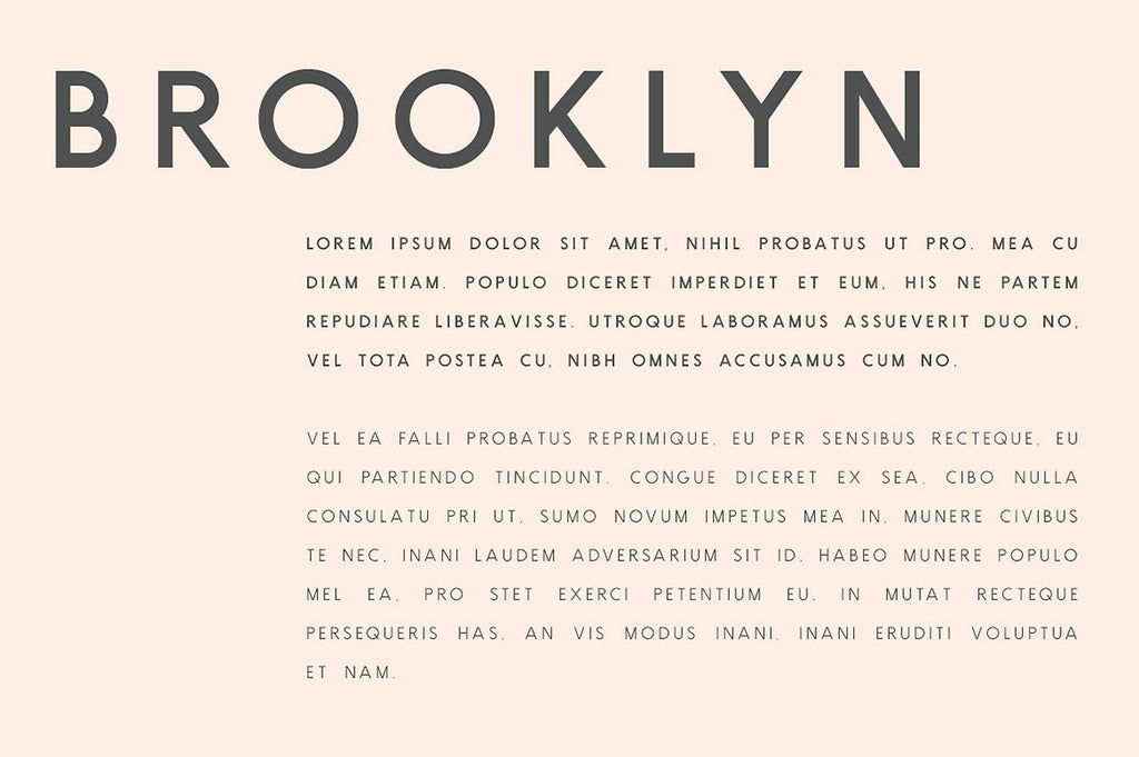 Brooklyn | Two Weight Font Family