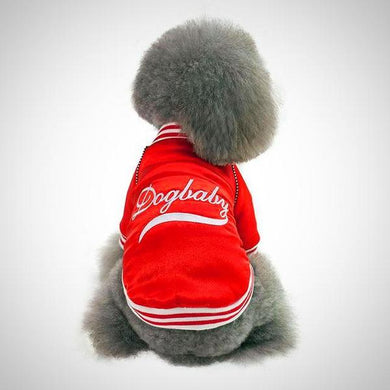 Baseball Sports Jacket | Dog Apparel